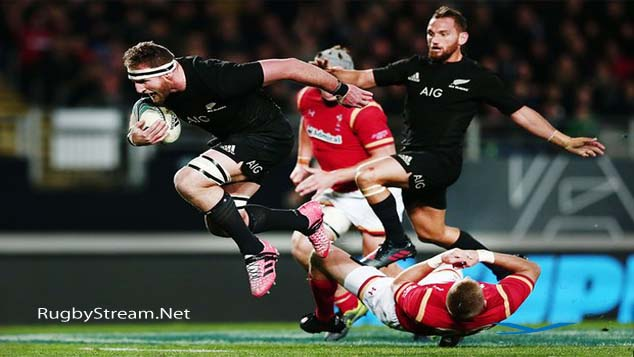 New Zealand 39 vs 21 Wales Results
